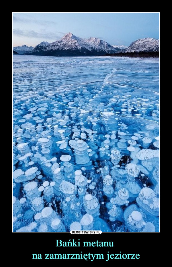 Bańki metanu na zamarzniętym jeziorze –  Kochanie zostawte naczynia. DZiSjest dzień kobiet!Umyjesz je jutro..
