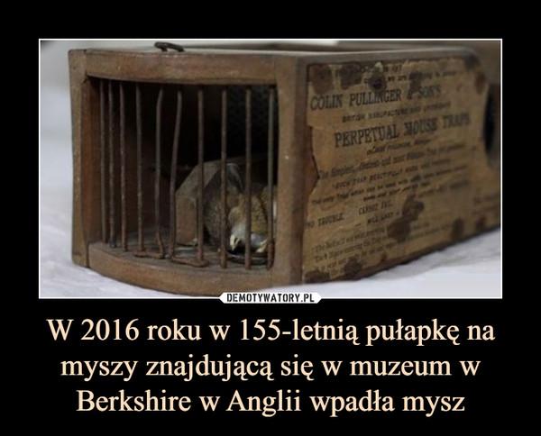 W 2016 roku w 155-letnią pułapkę na myszy znajdującą się w muzeum w Berkshire w Anglii wpadła mysz –