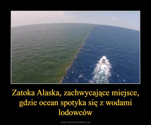 Zatoka Alaska, zachwycające miejsce, gdzie ocean spotyka się z wodami lodowców –