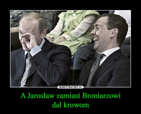 A Jarosław zamiast Broniarzowidał krowom –