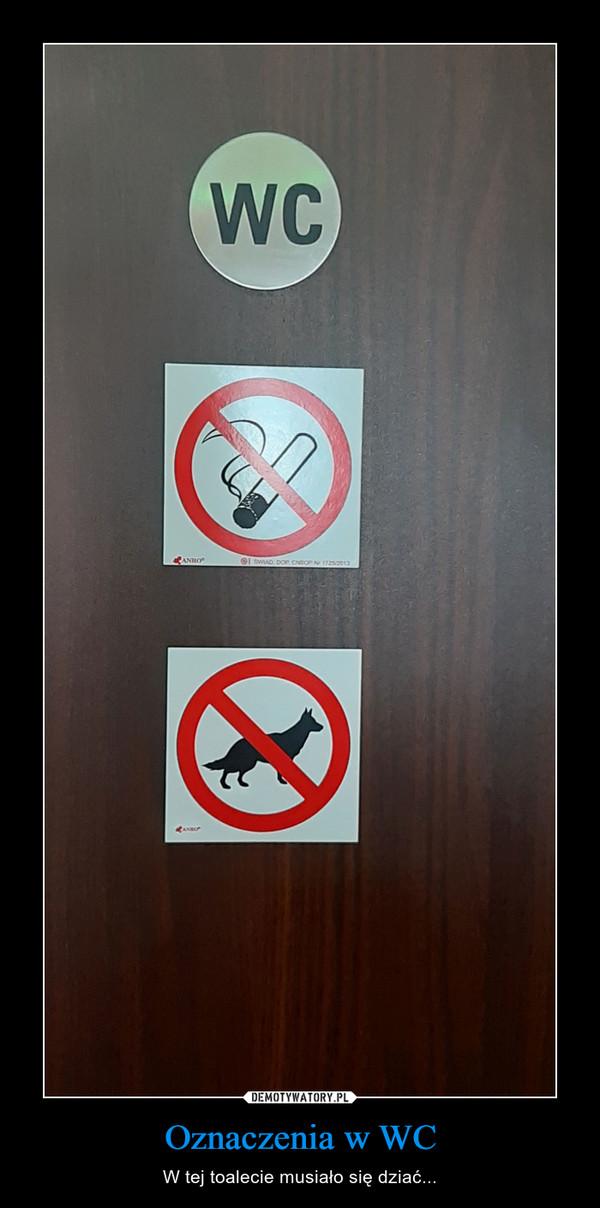 Oznaczenia w WC – W tej toalecie musiało się dziać...