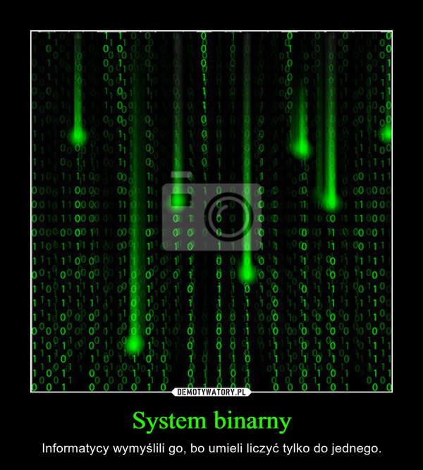 System binarny – Informatycy wymyślili go, bo umieli liczyć tylko do jednego.