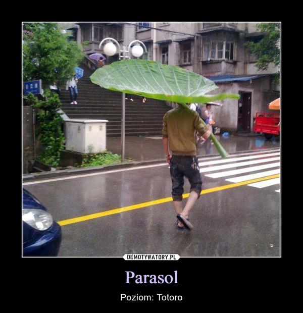 Parasol – Poziom: Totoro