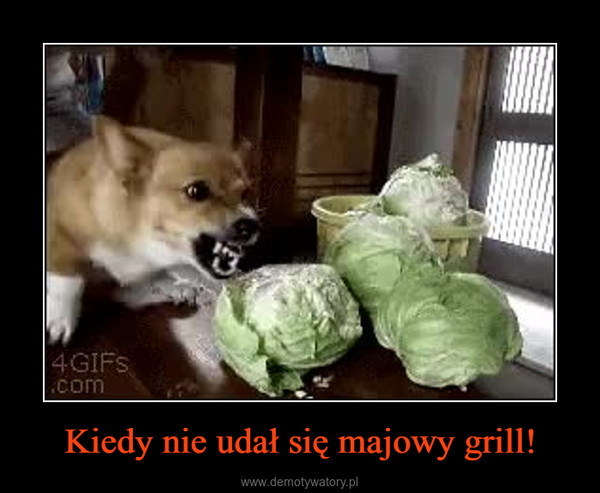 Kiedy nie udał się majowy grill! –