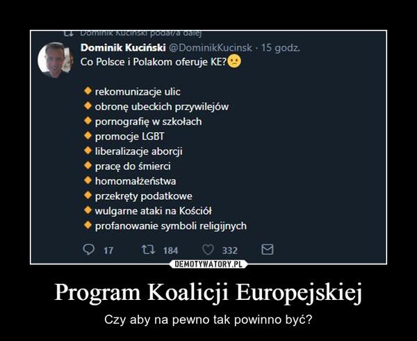 Program Koalicji Europejskiej – Czy aby na pewno tak powinno być?