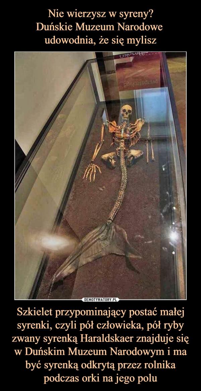 Szkielet przypominający postać małej syrenki, czyli pół człowieka, pół ryby zwany syrenką Haraldskaer znajduje się w Duńskim Muzeum Narodowym i ma być syrenką odkrytą przez rolnika podczas orki na jego polu –