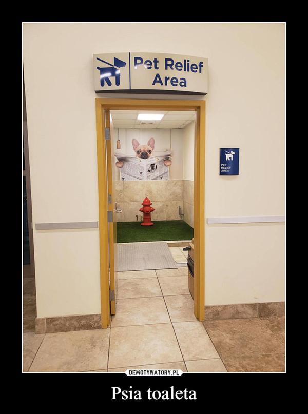 Psia toaleta –