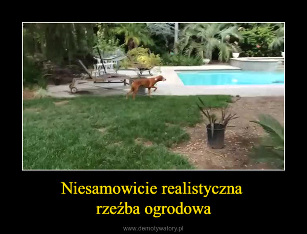 Niesamowicie realistyczna rzeźba ogrodowa –
