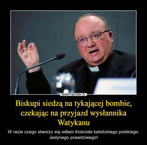 Biskupi siedzą na tykającej bombie, czekając na przyjazd wysłannika Watykanu – W razie czego stworzy się odłam Kościoła katolickiego polskiego. Jedynego prawdziwego!