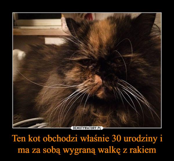 Ten kot obchodzi właśnie 30 urodziny i ma za sobą wygraną walkę z rakiem –