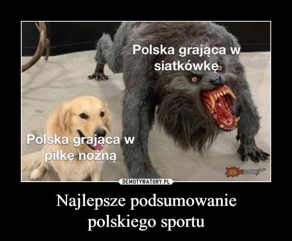 Najlepsze podsumowaniepolskiego sportu –