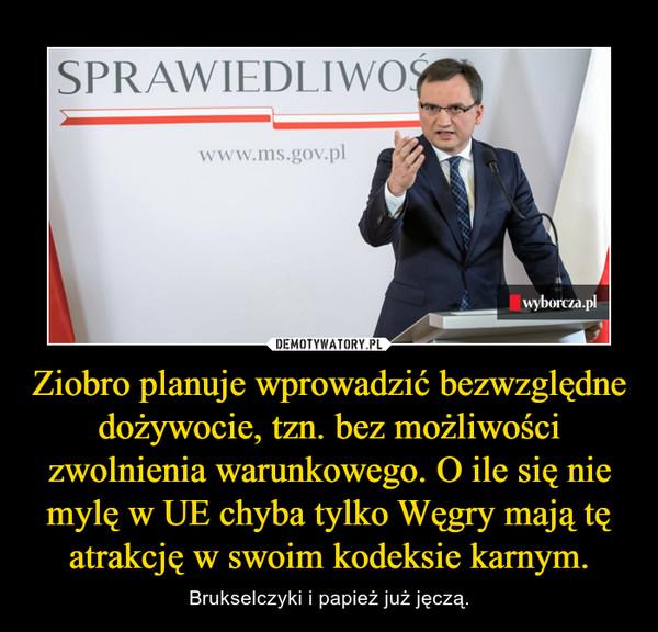 Ziobro planuje wprowadzić bezwzględne dożywocie, tzn. bez możliwości zwolnienia warunkowego. O ile się nie mylę w UE chyba tylko Węgry mają tę atrakcję w swoim kodeksie karnym. – Brukselczyki i papież już jęczą.