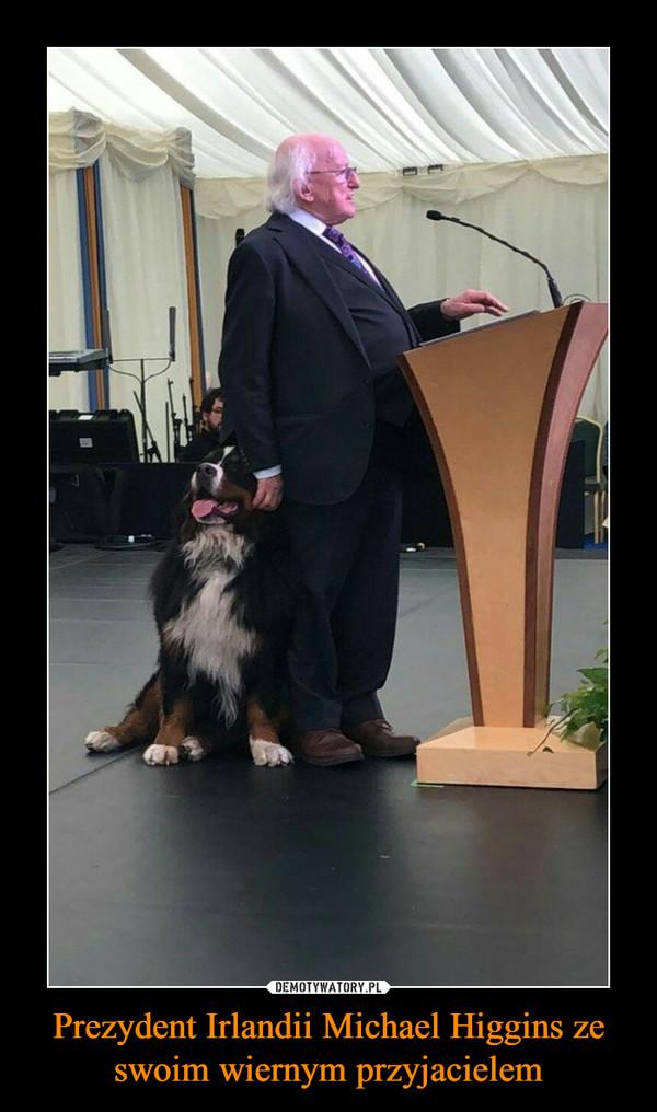 Prezydent Irlandii Michael Higgins ze swoim wiernym przyjacielem –