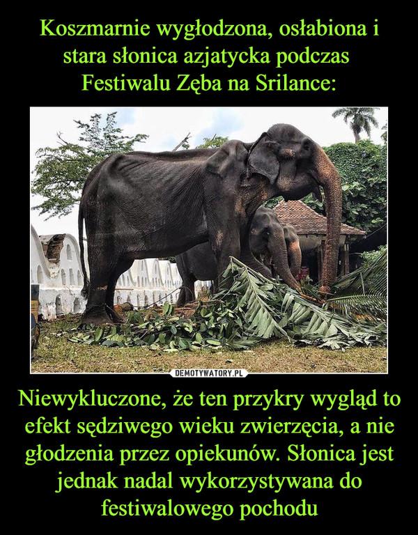 Niewykluczone, że ten przykry wygląd to efekt sędziwego wieku zwierzęcia, a nie głodzenia przez opiekunów. Słonica jest jednak nadal wykorzystywana do festiwalowego pochodu –