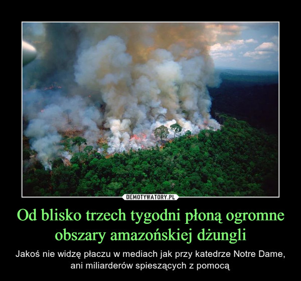 Od blisko trzech tygodni płoną ogromne obszary amazońskiej dżungli – Jakoś nie widzę płaczu w mediach jak przy katedrze Notre Dame, ani miliarderów spieszących z pomocą