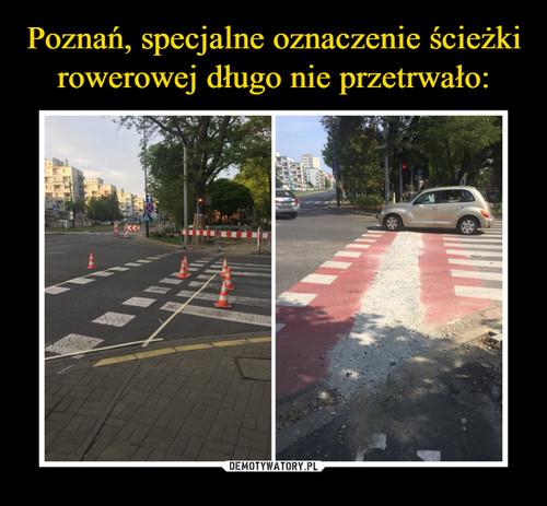 Poznań, specjalne oznaczenie ścieżki rowerowej długo nie przetrwało: