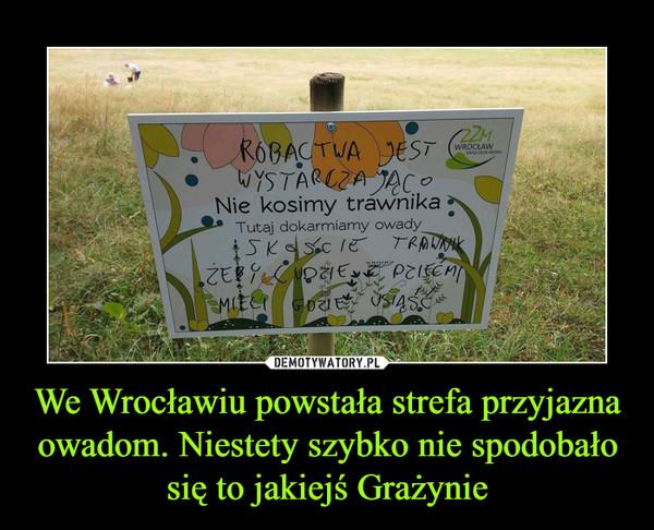 We Wrocławiu powstała strefa przyjazna owadom. Niestety szybko nie spodobało się to jakiejś Grażynie –