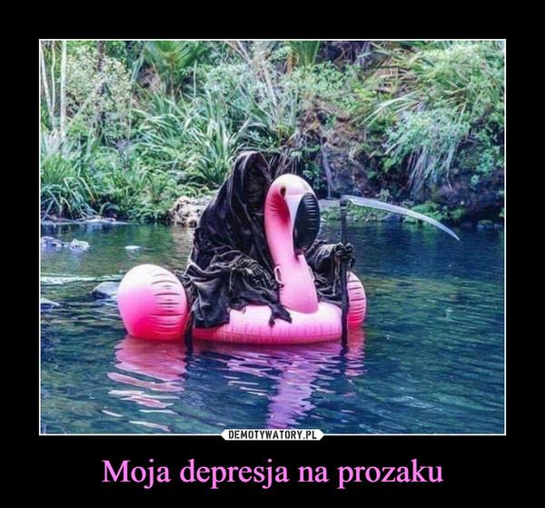 Moja depresja na prozaku –