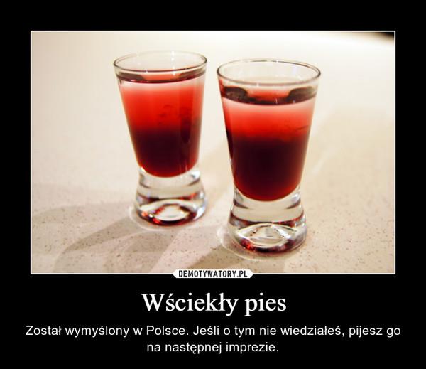 Wściekły pies – Został wymyślony w Polsce. Jeśli o tym nie wiedziałeś, pijesz go na następnej imprezie.