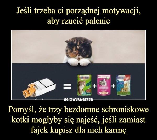 Pomyśl, że trzy bezdomne schroniskowe kotki mogłyby się najeść, jeśli zamiast fajek kupisz dla nich karmę –