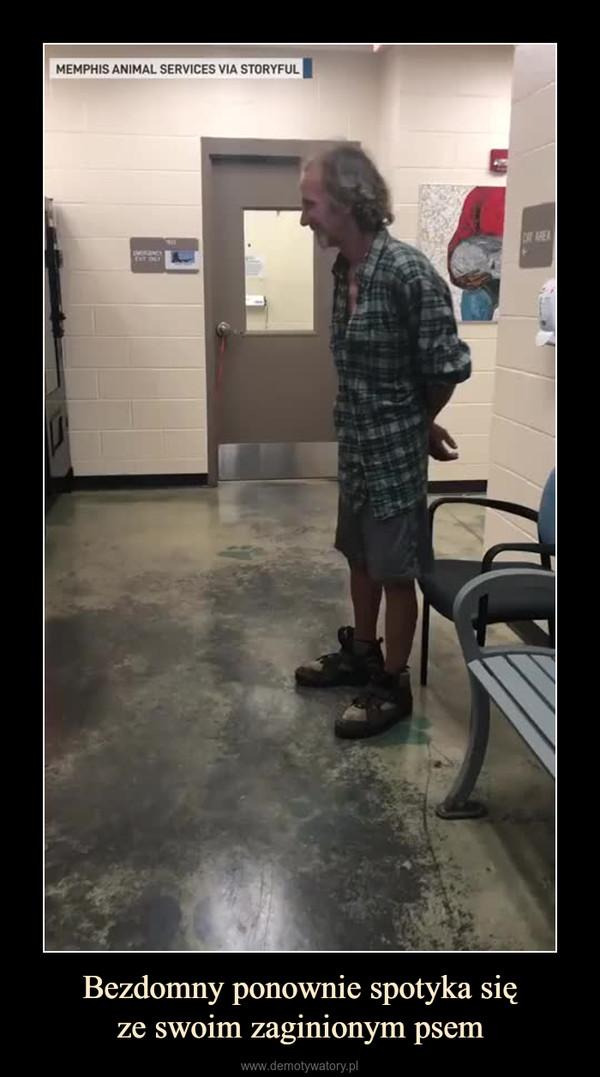 Bezdomny ponownie spotyka sięze swoim zaginionym psem –