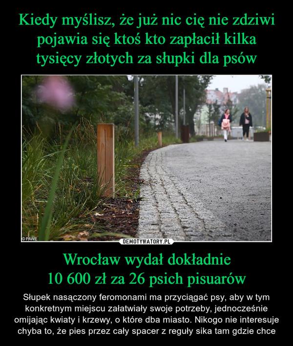 Wrocław wydał dokładnie10 600 zł za 26 psich pisuarów – Słupek nasączony feromonami ma przyciągać psy, aby w tym konkretnym miejscu załatwiały swoje potrzeby, jednocześnie omijając kwiaty i krzewy, o które dba miasto. Nikogo nie interesuje chyba to, że pies przez cały spacer z reguły sika tam gdzie chce