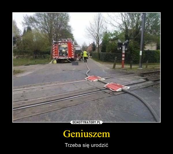 Geniuszem – Trzeba się urodzić