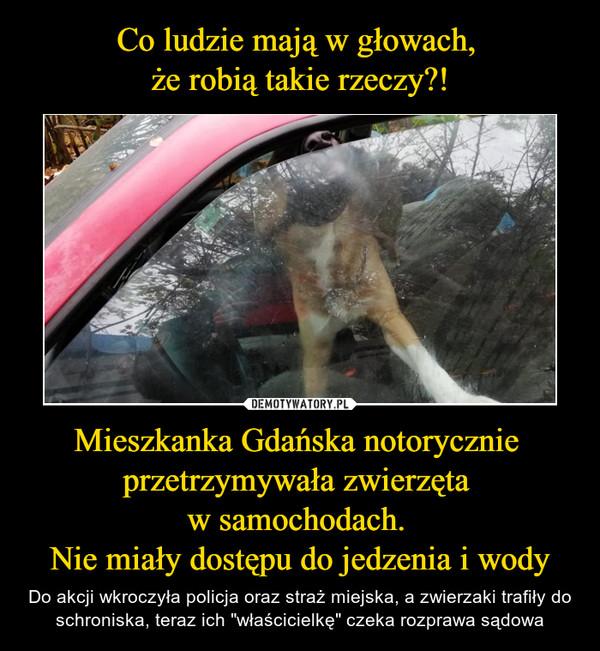 """Mieszkanka Gdańska notorycznie przetrzymywała zwierzęta w samochodach. Nie miały dostępu do jedzenia i wody – Do akcji wkroczyła policja oraz straż miejska, a zwierzaki trafiły do schroniska, teraz ich """"właścicielkę"""" czeka rozprawa sądowa"""