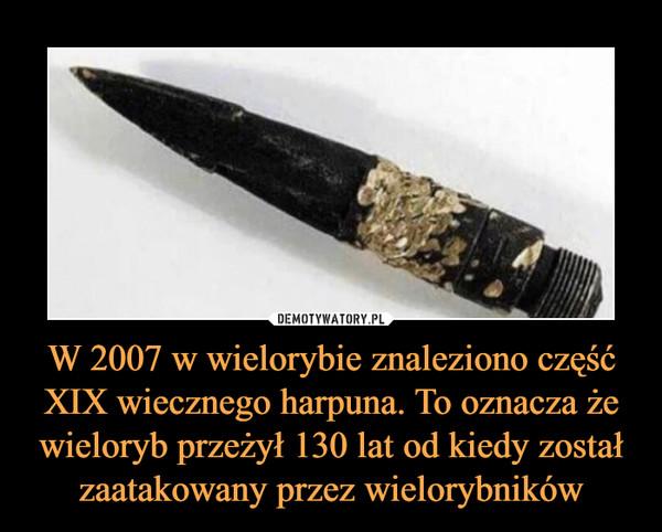 W 2007 w wielorybie znaleziono część XIX wiecznego harpuna. To oznacza że wieloryb przeżył 130 lat od kiedy został zaatakowany przez wielorybników –