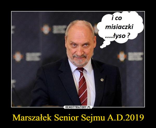 Marszałek Senior Sejmu A.D.2019 –