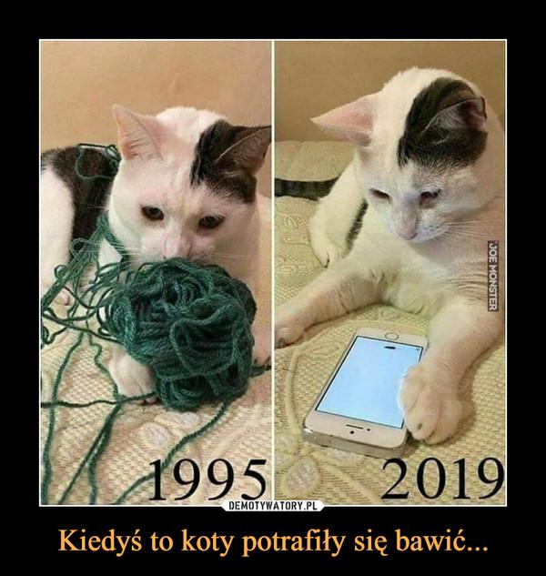 Kiedyś to koty potrafiły się bawić... –
