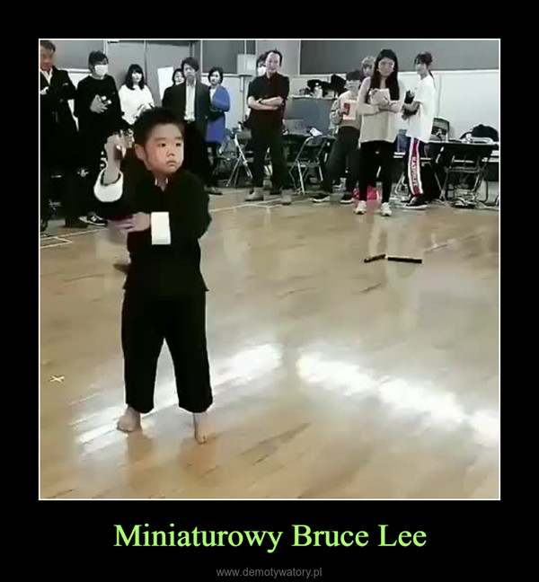 Miniaturowy Bruce Lee –