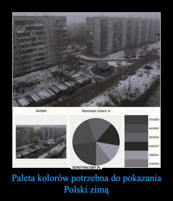 Paleta kolorów potrzebna do pokazania Polski zimą –