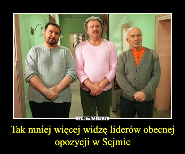 Tak mniej więcej widzę liderów obecnej opozycji w Sejmie –