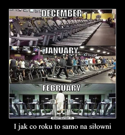I jak co roku to samo na siłowni
