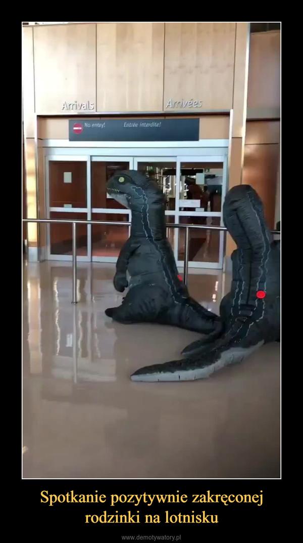 Spotkanie pozytywnie zakręconej rodzinki na lotnisku –