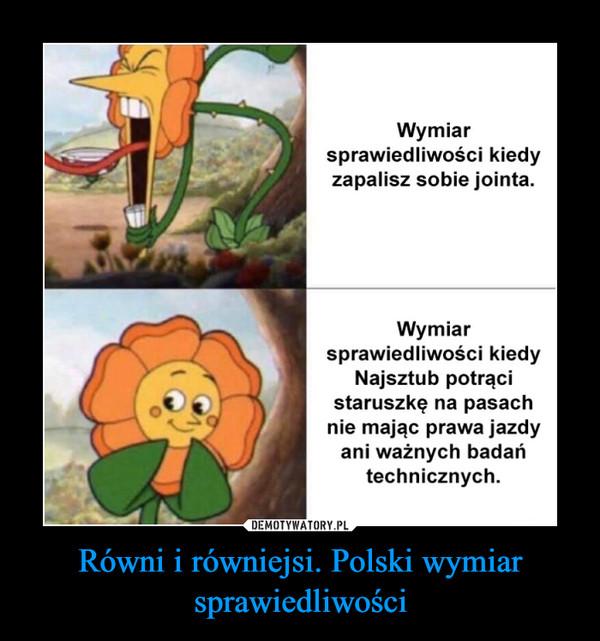 Równi i równiejsi. Polski wymiar sprawiedliwości –