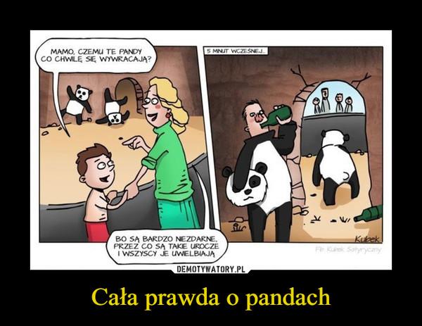Cała prawda o pandach –  Mamo, czemu te pandy co chwilę się wywracają? Bo są bardzo niezdarne przez co są takie urocze i wszyscy je uwielbiają