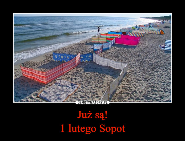 Już są!1 lutego Sopot –