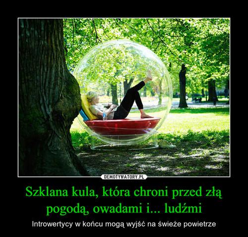 Szklana kula, która chroni przed złą pogodą, owadami i... ludźmi