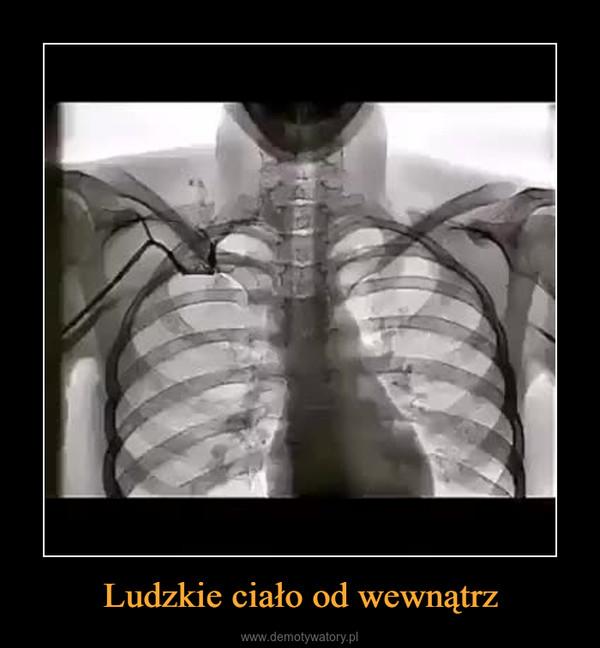 Ludzkie ciało od wewnątrz –