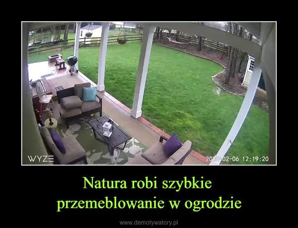Natura robi szybkie przemeblowanie w ogrodzie –