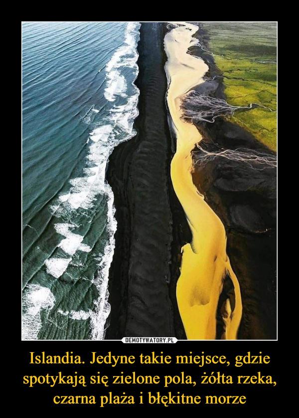 Islandia. Jedyne takie miejsce, gdzie spotykają się zielone pola, żółta rzeka, czarna plaża i błękitne morze –