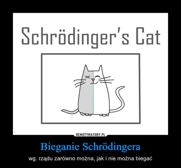Bieganie Schrödingera – wg. rządu zarówno można, jak i nie można biegać