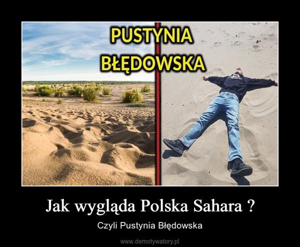 Jak wygląda Polska Sahara ? – Czyli Pustynia Błędowska