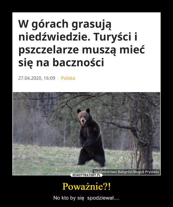 Poważnie?! – No kto by się  spodziewał.... W górach grasują niedźwiedzie. Turyści i pszczelarze muszą mieć się na baczności
