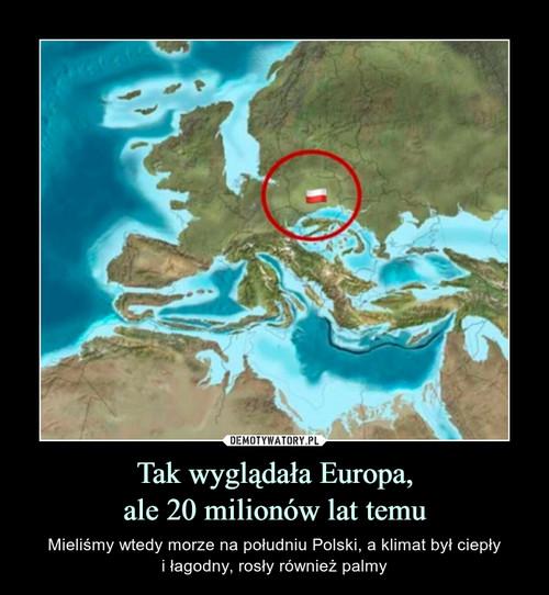 Tak wyglądała Europa, ale 20 milionów lat temu