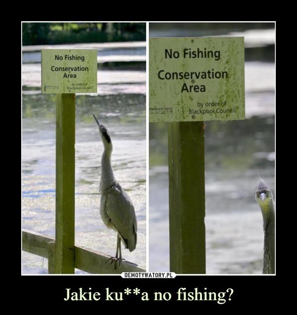 Jakie ku**a no fishing? –