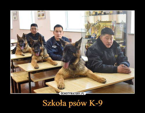 Szkoła psów K-9