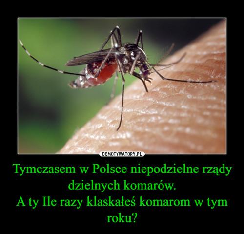 Tymczasem w Polsce niepodzielne rządy dzielnych komarów. A ty Ile razy klaskałeś komarom w tym roku?